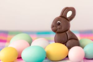 chocolate-easter-bunny-royalty-free-image-1583341504